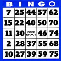 75 balls bingo ticket